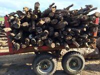 5 Tonne Timber Trailer