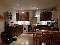 Double room available in friendly house!