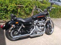 Harley Davidson Sportster 883 Superlow for Sale