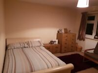 Large double room to rent in Chelmsford
