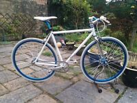 Norco Spade 2010 Single Speed Road Bike/Fixie (Size Small)