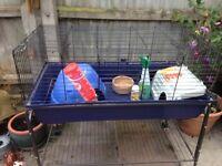 Indoor rabbit /guinea pig cage