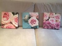 3 rose canvases