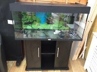 """JUWEL"" BIG FISH TANK"