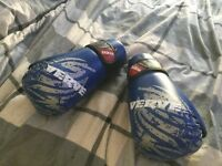 Verve points kickboxing 10oz martail arts gloves
