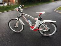 Electric bicycle: Strada GT