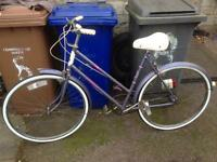 Ladies Raleigh Caprice