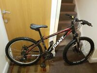 Gaint mountain bike with 26 inch wheel size