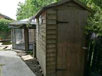 Shed 6 x 4ft