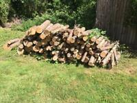 Logs free to collector