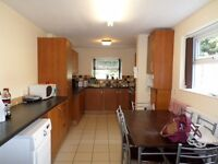 Stunning 5 Bed house. S10. Fully Furnished. High standards. Close to Uni and hospitals