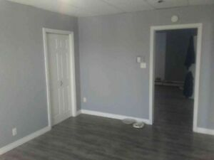 Large renovated 2 Bedroom apt Douglas