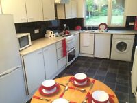 Full house with 4 bedrooms available to students over SUMMER!!