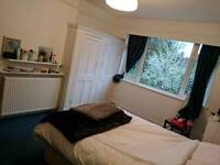 A bright and spacious double room is available in Childs Hill