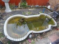 free fish pond pump and filter
