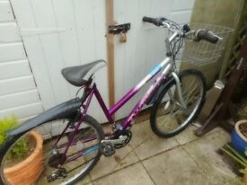 ladies pink silver 20 inch frame cascade twilight bike with basket and lock