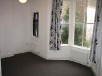 A lovely light and spacious 2 double bed flat in Kemptown