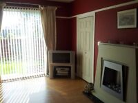Large double room for rent within clean 3 bedroom house