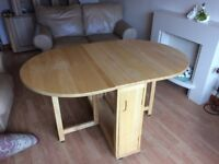 Oval Butterfly Table and Chairs