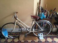 An easy-to-ride, cream, fun bike