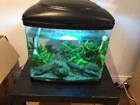 Interpet Fish Pod 48 Aquarium Kit