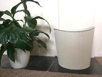 Washing Basket or storage