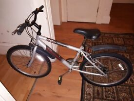 Raleigh bike - ideal for 12-15 year old - great condition