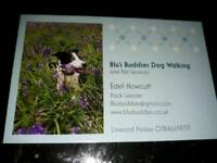 Dog Walker & Small Animal boarding Linwood