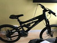 Devinci 8flat8 DH Bike