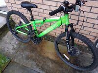 carrera blast 24 - junior mountain bike