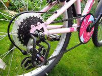 "Girls Apollo Kinx - 6 Speed-20""Bicycle + Mudguards."
