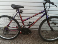 RALEIGH BOY OR GIRLS BIKE 26 inch wheels 10 speed gears £65 ovno