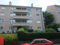 Lovely Two Bedroom Flat in Mansewood