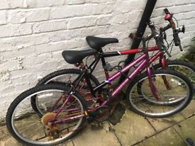 2 Free Bicycles (collection only)