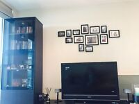 High Quality Bookshelf / Showcase with In-Built Lights