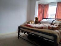 Bright and spacious double room to let in Selly Oak