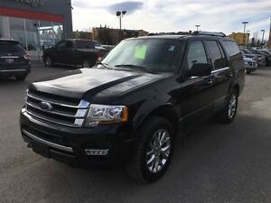 2017 Ford Expedition Limited-LEATHER HEATED SEATS, SUNROOF