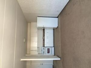 bright and spacious 1 bedroom