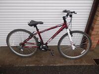 Apollo Cosmo Urban Bike