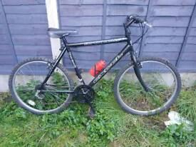 Black Bullet Push Bike