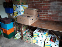 LARGE COLLECTION OF ASSORTED BOOKS OVER 500 IN 25 BOXES
