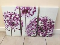 Purple Flower Canvases