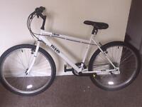 Flite mountain bike