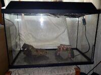 Fish tank plus accessories 60x30x38
