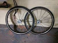 Spinergy Wheelchair Wheels 24''