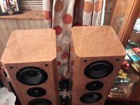 LakeAudio 5 point 2 Speakers