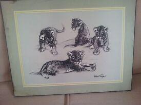 william timym animal cubs print,£40.00...