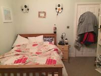 Lovely double room in Kingsdown flat share