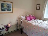 Lovely double room in shared home Coleford, Somerset 30 minutes from Bath, Frome and Glastonbury