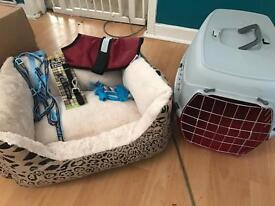 Puppy/small dog bundle all new BARGAIN 40ono
